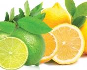 Citrus Squash